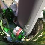 Weniger Müll – Frühjahrsputz zeigt Wirkung