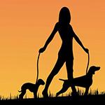 Hundekundenachweis – nächster Termin BH Weiz