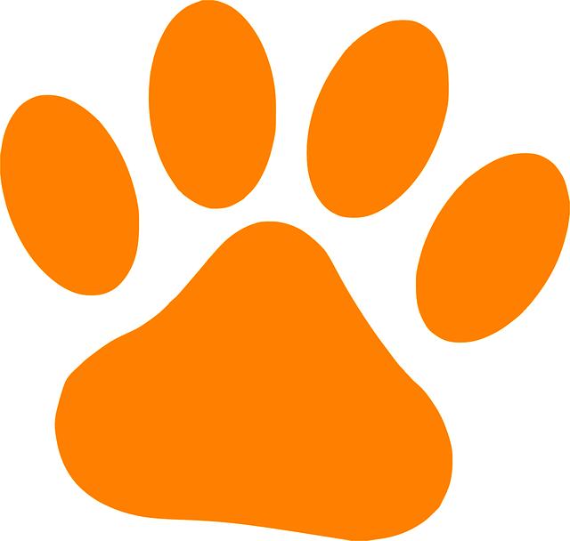 Hundekundenachweis